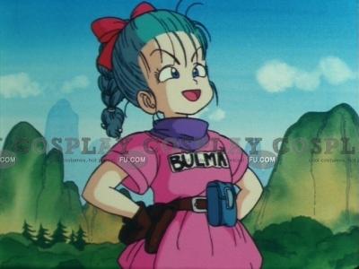 Bulma Costume from Dragon Ball