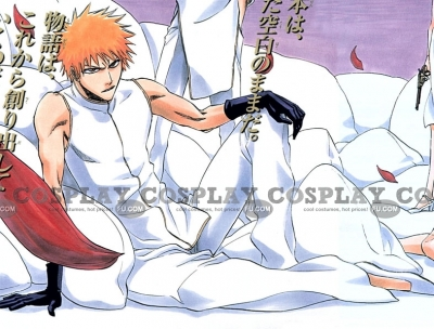 Ichigo Cosplay (Junbaku Opera Kaaten) from Bleach