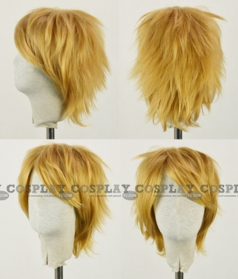 Sora Wig (2nd) from Kingdom Hearts