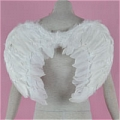 Angel Wing (Small)