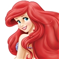 Ariel Wig from The Little Mermaid