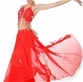 Belly Dance Costume (8 Colors 03)