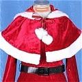 Christmas Costume (20)
