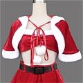 Christmas Costume (22)