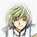 Fay Cosplay Wig from Tsubasa: Reservoir Chronicle