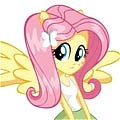 Fluttershy Costume De  My Little Pony Friendship is Magic