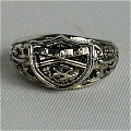 Gokudera Ring from Katekyo Hitman Reborn