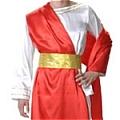 Prince Costume (Sage)