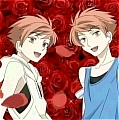 Hikaru and Kaoru Hitachiin Cosplay Wig from Ouran High School Host Club