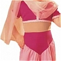 Jeannie Costume from I Dream Of Jeannie