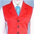 Justice Cosplay (Vest) Desde Ace Attorney