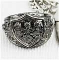 Kyoya Ring (Cell Phone Accessory) De  Katekyo Hitman Reborn