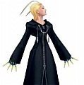 Larxene Cosplay Costume from Kingdom Heart