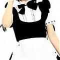 Maid Costume (169)