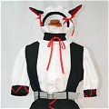 Maid Costume (175)