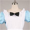 Maid Costume (190)