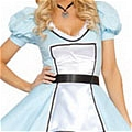 Maid Costume (97)