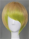 Mix Color Wig (Short,Straight,B09)