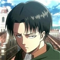 Rivaille Wig from Attack On Titan