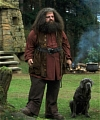 Rubeus Hagrid Cosplay from Harry Potter