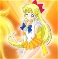 Sailor Venus Costume from Sailor Senshi