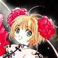 Sakura Cosplay (Cheongsam) from Cardcaptor Sakura