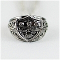 Sasagawa Ring from Katekyo Hitman Reborn