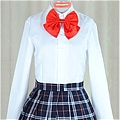 School Girl Uniform (Akane without Coat)
