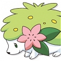 Shaymin Cosplay from Pokemon