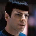 Spock Wig from Star Trek