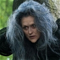 The Witch Wig from Into the Woods