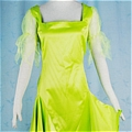 Tinker Bell Costume from Peter Pan