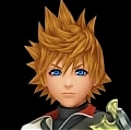 Ventus Wig von Kingdom Heats