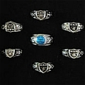Vongola Family 7 Ring Set from Katekyo Hitman Reborn!