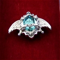 Yamamoto Ring (4th) from Katekyo Hitman Reborn