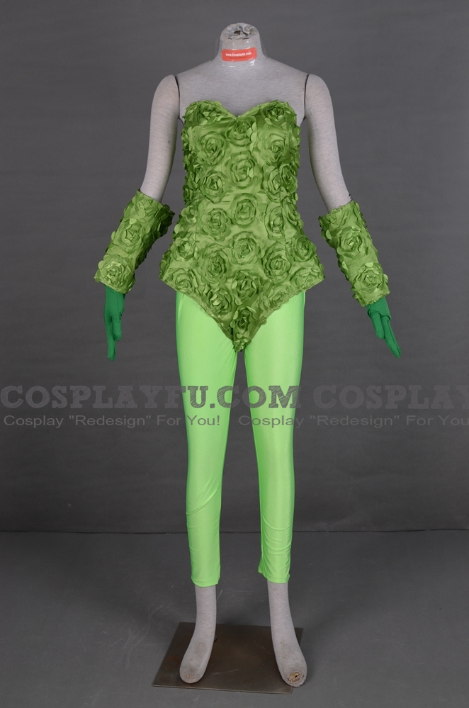 Batman L'Empoisonneuse Costume (2nd)