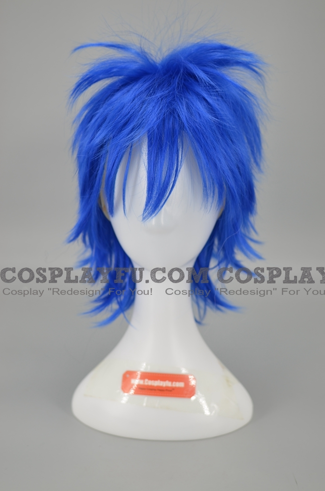 Jellal Wig from Fairy Tail