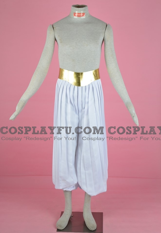 DBZ Majin Parts (Pants and Belt) from Dragon Ball GT