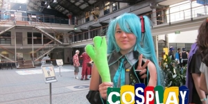 Mini Animania 2013 AU
