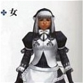 Privert Cosplay Costume (Maid) from Monster Hunter