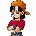 Dragon Ball Pan Kostüme
