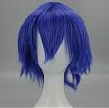 Short Blue Wig (536)