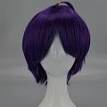 Short Purple Wig (7565)