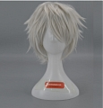 Short Straight Silver Grey Wig (6243)